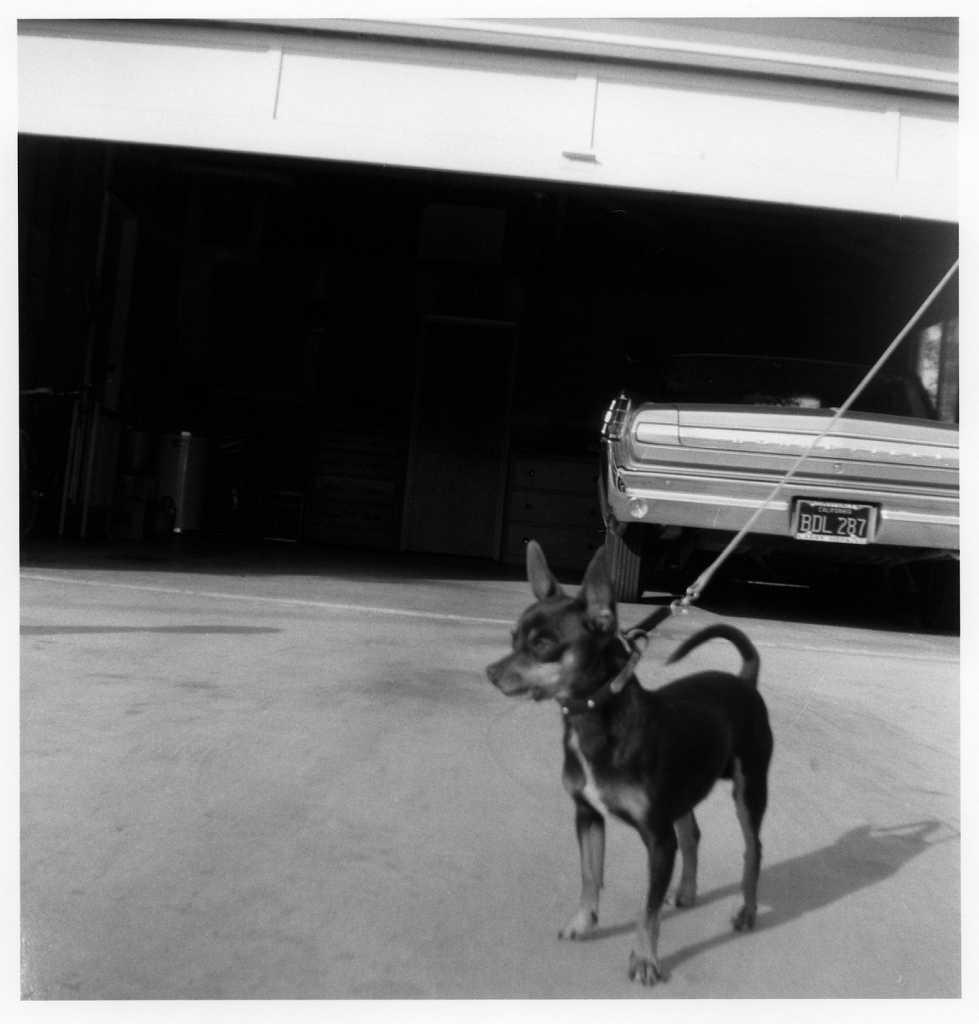 hawkeye-1959-015.jpg